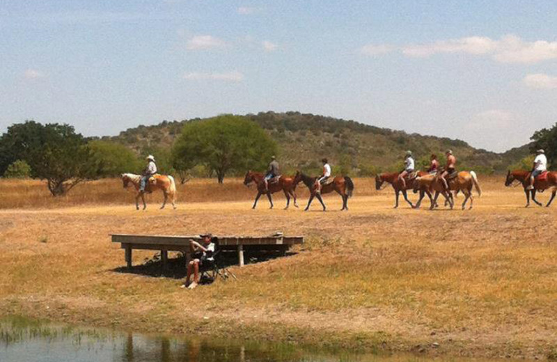 Trail rides at Neal's Lodges.