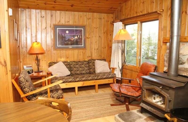 Cabin living room at Nor'Wester Lodge.