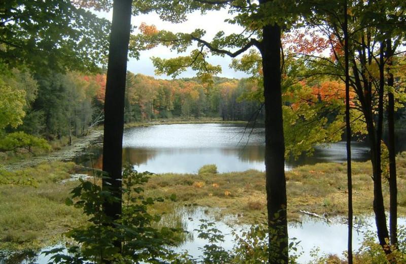 Lake view at Highpoint Village.