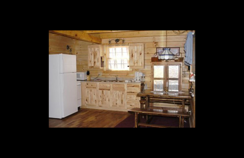 Cabin kitchen at Honey Fork Properties.