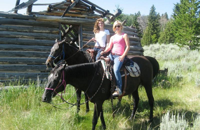 Horseback riding at Madison Management.