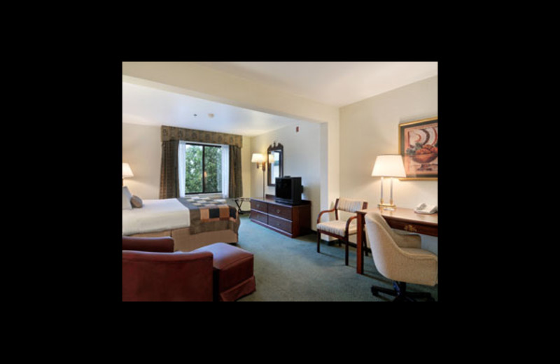 Guest room at Wingate by Wyndham - Love Field West.