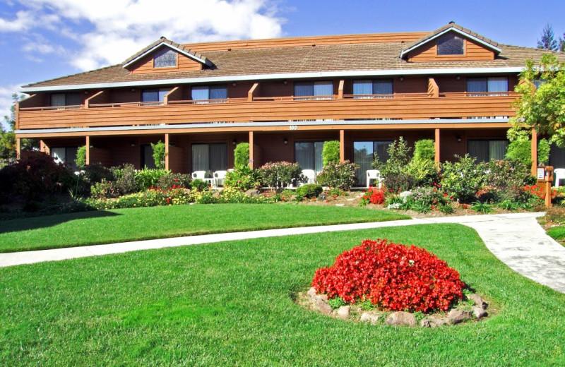 Exterior view of Best Western Seacliff Inn.