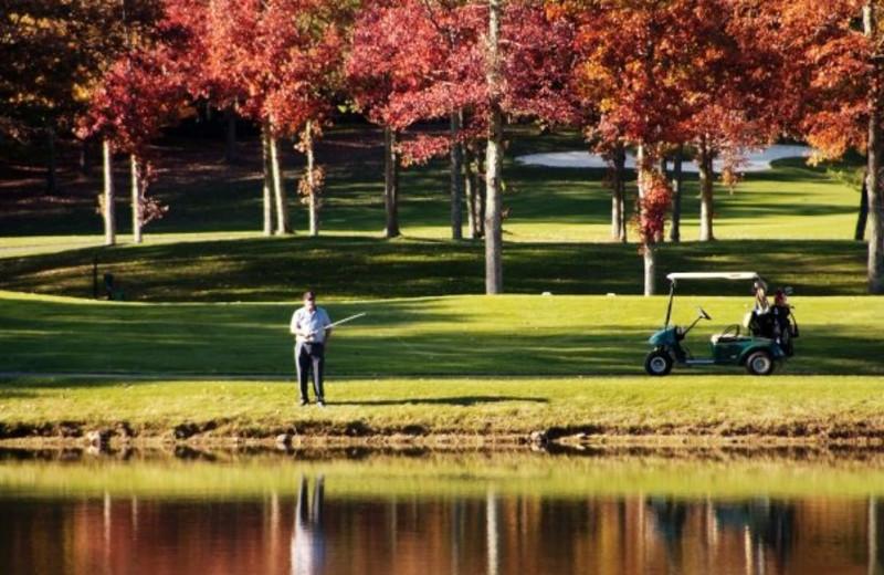 Golfing at The Resort at Glade Springs
