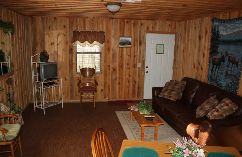 Moose Lodge living room at Heath Valley Cabins.