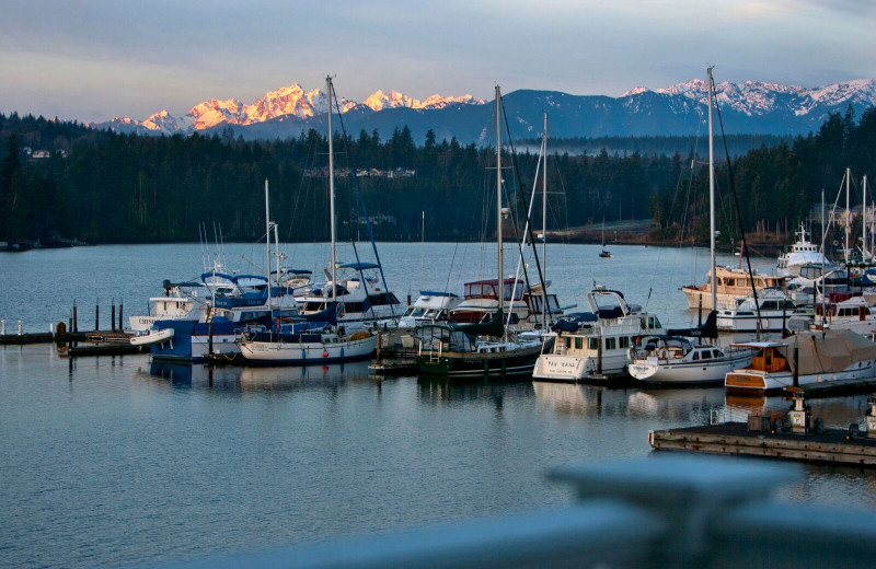 Marina at The Resort At Port Ludlow.