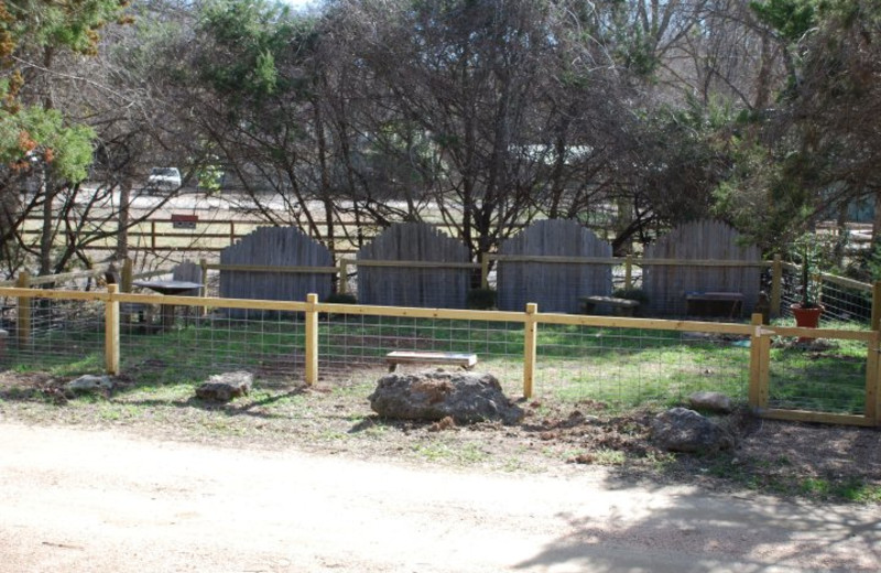 Fenced dog park at Cypress Creek Cottages.