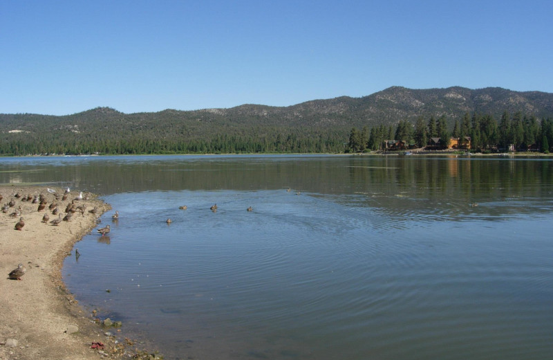 Lake view at Vintage Lakeside Inn.