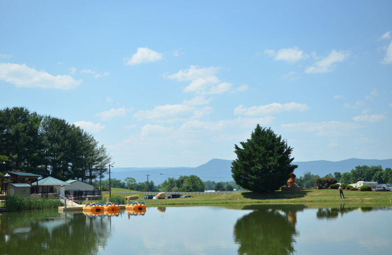 Fishing pond at Yogi Bear's Jellystone Park™ in Luray, VA.