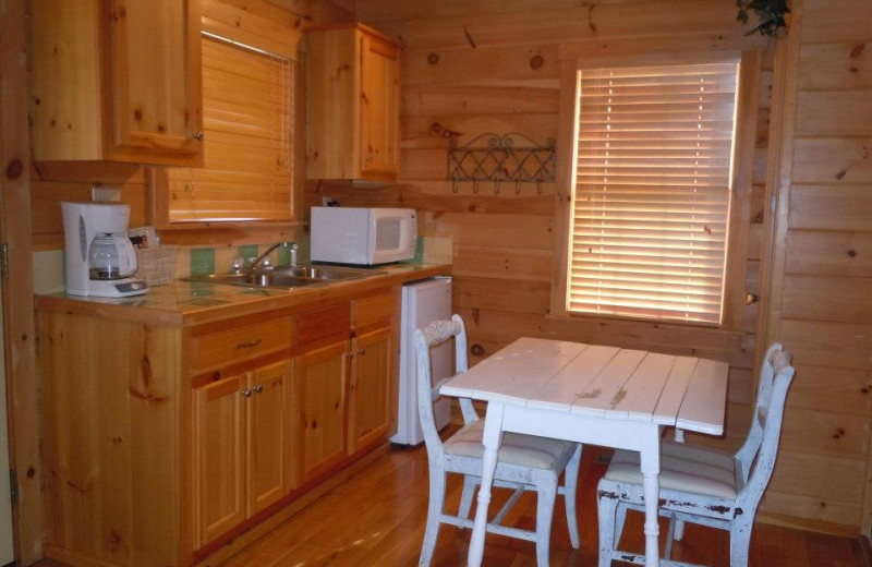 Chance For Romance cabin kitchen at New River Trail Cabins.