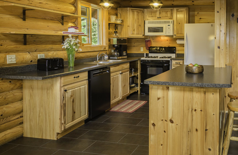 Cabin kitchen at White Eagle Resort.