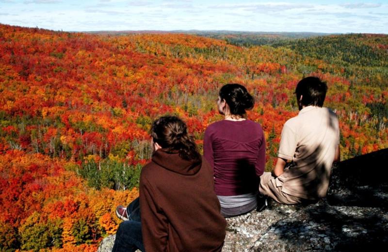 Fall colors at Eagle Ridge at Lutsen Mountain.