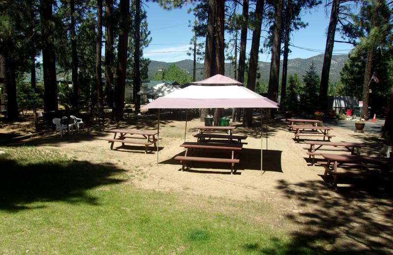 Picnic area at Honey Bear Lodge & Cabins.