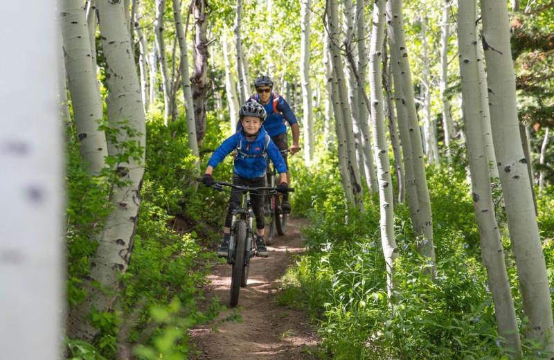 Biking through woods at Grand Summit Resort Hotel.