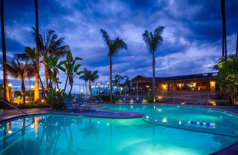 Outdoor pool at Best Western- The Island Palms Hotel & Marina.
