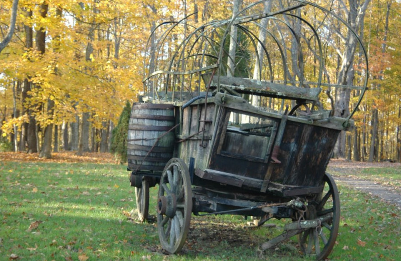 Wagon at Guggisberg Swiss Inn/Amish Country Riding Stables.