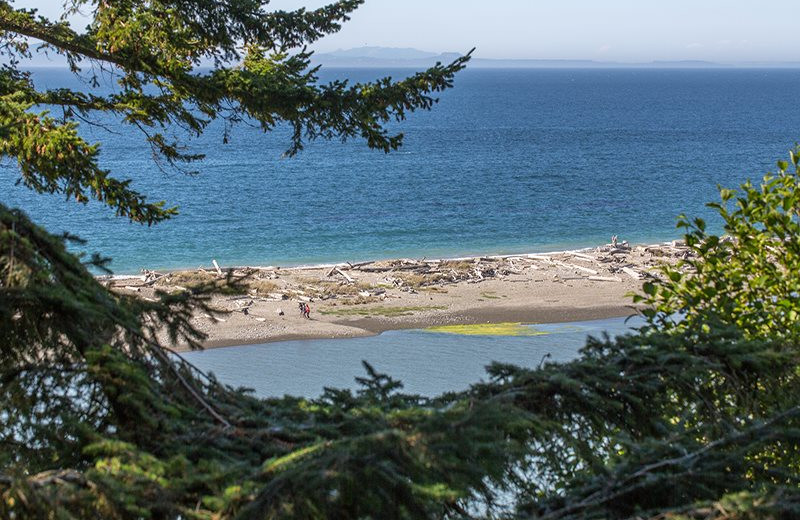 Beach view at Sequim Valley Properties.