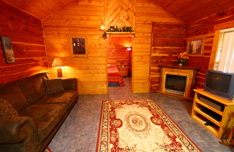 Spacious sitting area at Ozark Cabins.