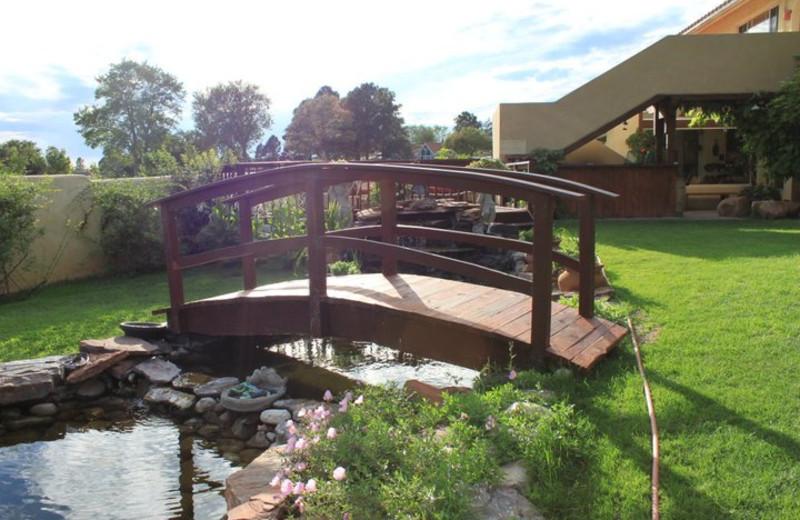 Garden pond at Inn at Paradise.