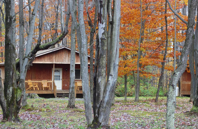 Exterior view of The Woods At Bear Creek Glamping Resort.