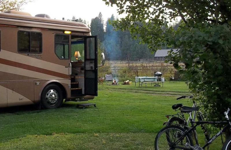 Campground at Cold Springs Resort.