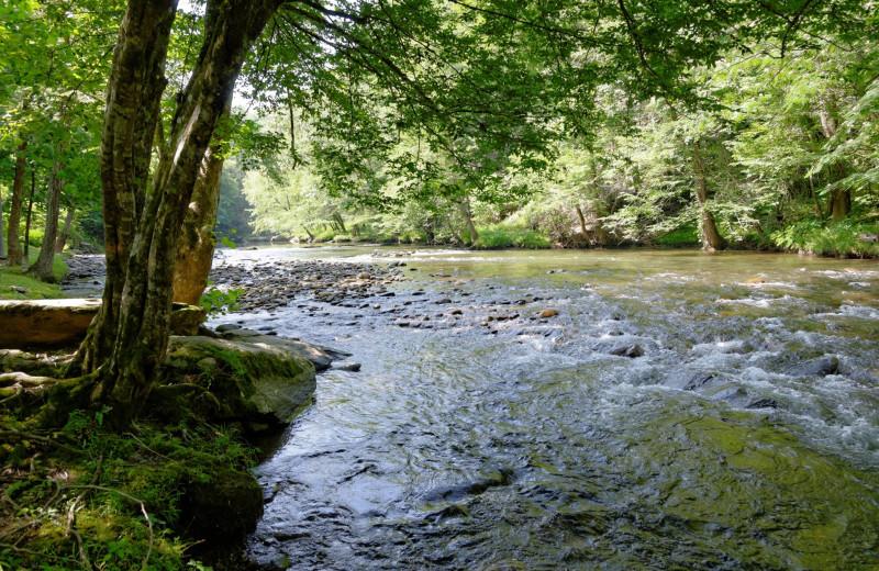 River at Aunt Bug's Cabin Rentals, LLC.