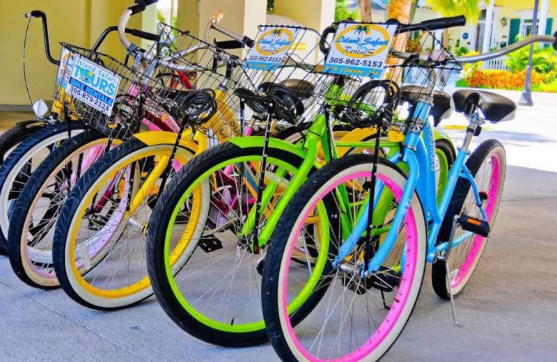 Bikes at Silver Palms Inn.