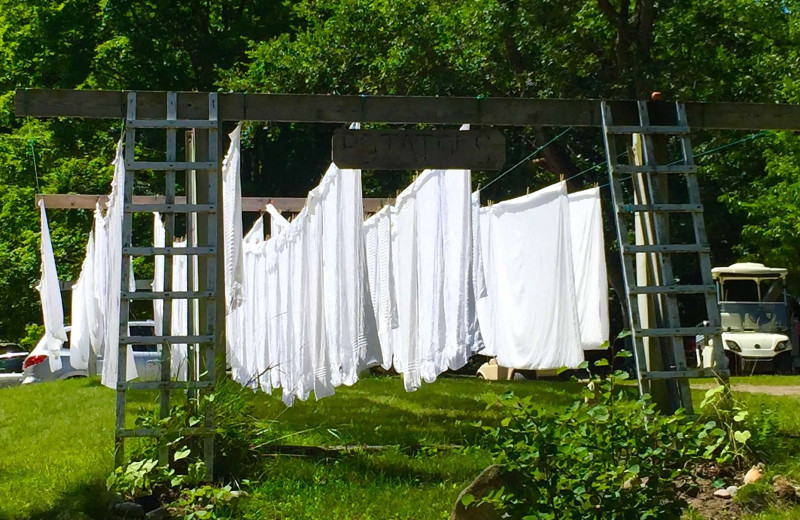 Sheets drying in the sun at Watervale Inn.