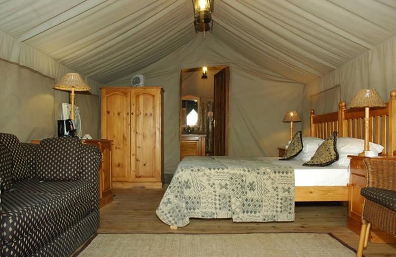 Bakgatla Resort tent at Golden Leopard Resorts.