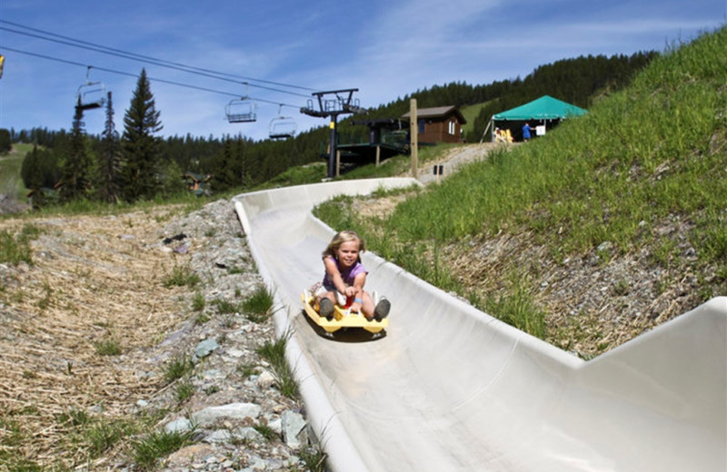 Alpine slide at Kandahar Lodge.