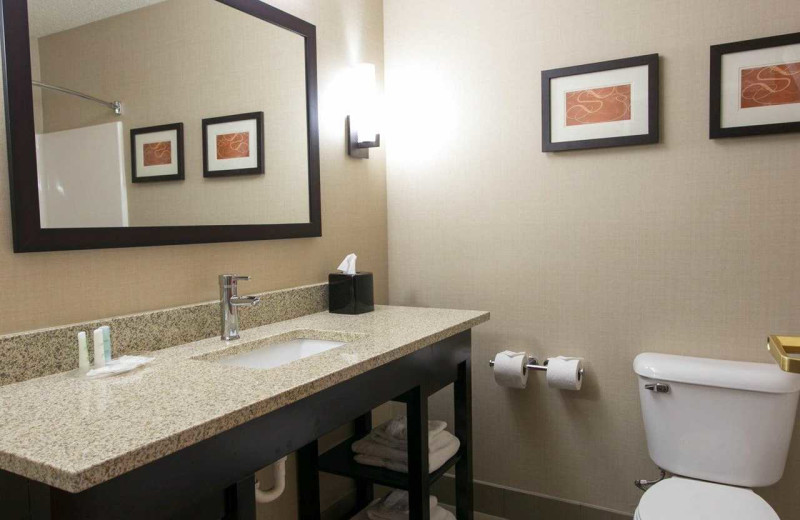 Guest bathroom at Comfort Suites Benton Harbor.