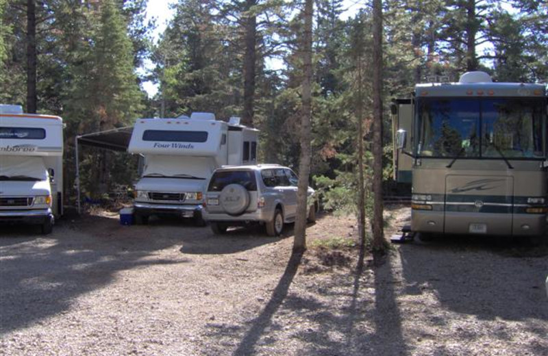 RV camp site at Pinewoods Resort.