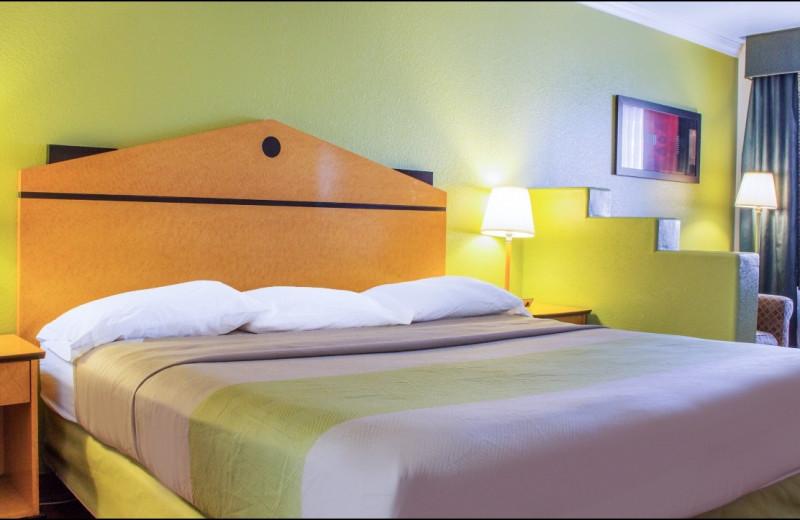 Guest room at Motel 6 Tempe Asu.