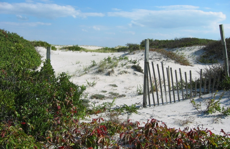 Island Beach State Park near Days Inn - Seaside Heights.