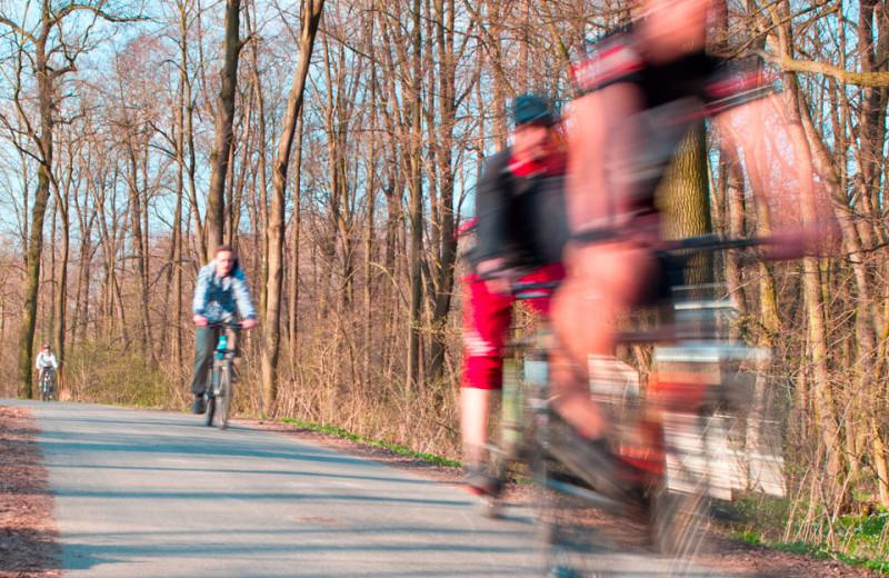 Biking at Open Hearth Lodge.