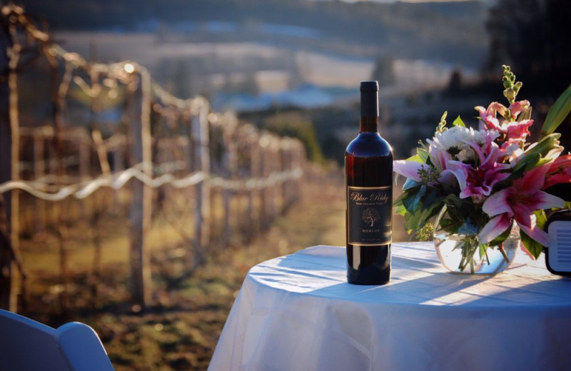 Winery near Pocono Mountain Rentals.
