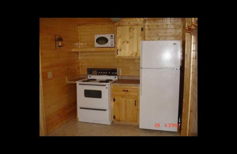 Cabin kitchen at Ward's Riverside Cabins.