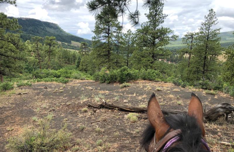 Horseback riding at Colorado Trails Ranch.