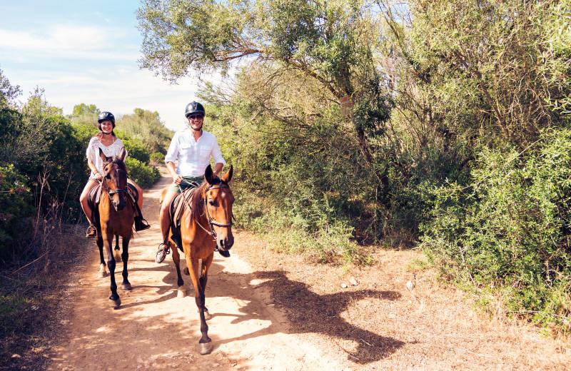 Horseback riding at Woodfield Properties.