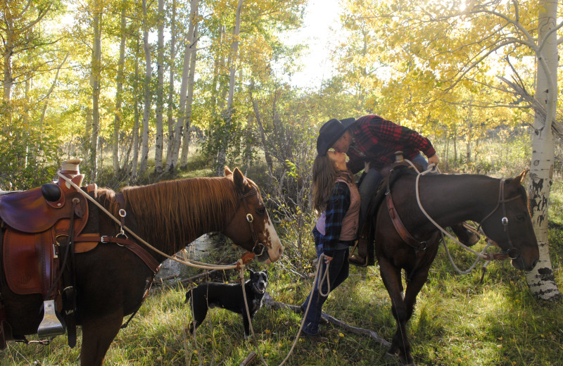 Romantic fall horseback ride in the Colorado mountains.