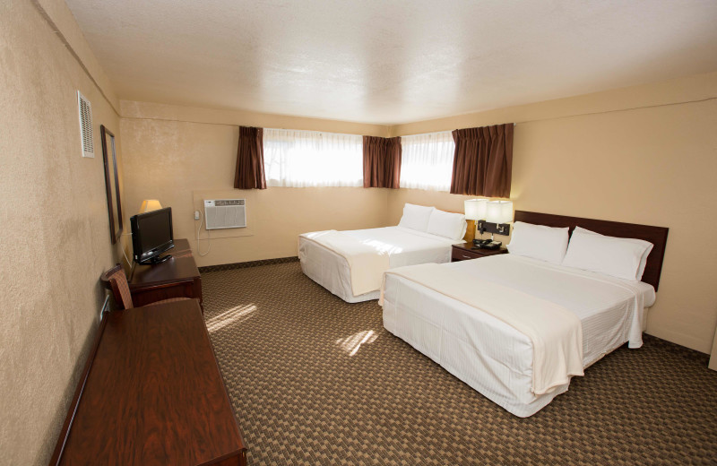 Guest room at Havasu Springs Resort.