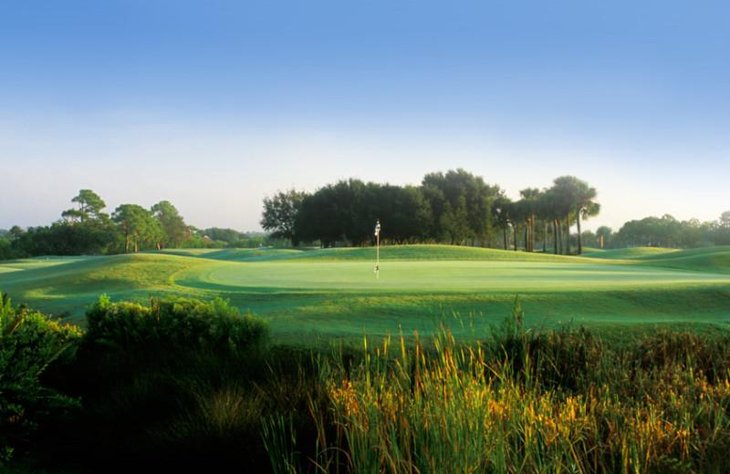 Golf course near Shoreline Island Resort.