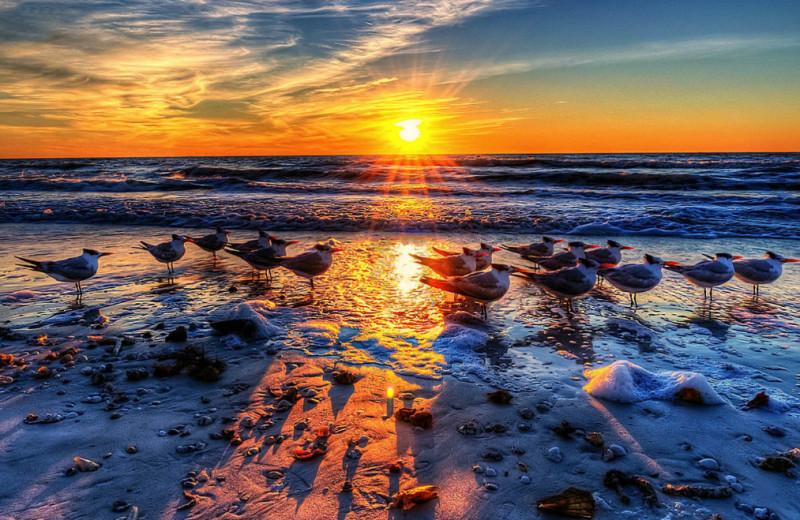 Sunset at Hi-Tide Ocean Beach Resort.