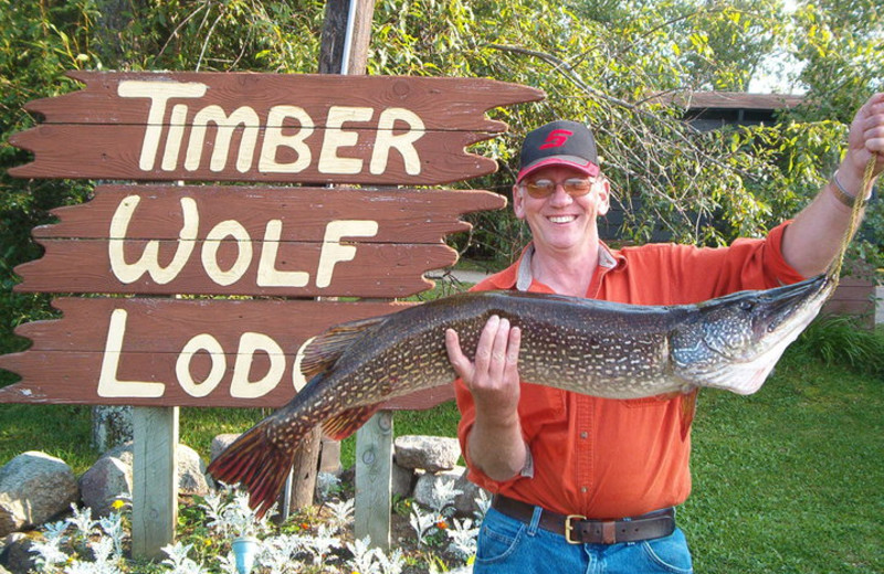 Big Catch at Timber Wolf Lodge Cabins.
