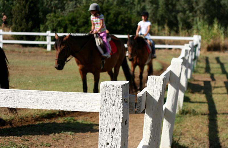 Horseback riding at Nitschke's Northern Resort.
