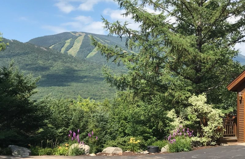 Mountain view at All Mountain Rentals.