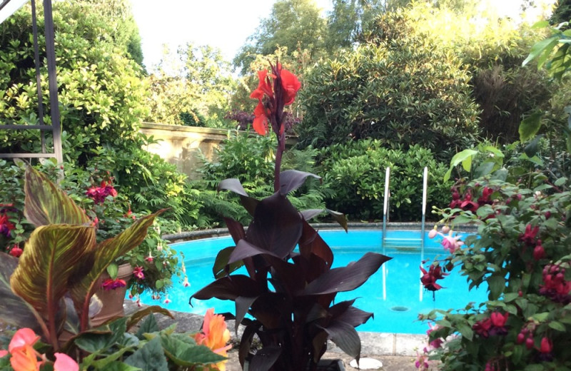 Outdoor pools at Holly House B&B.