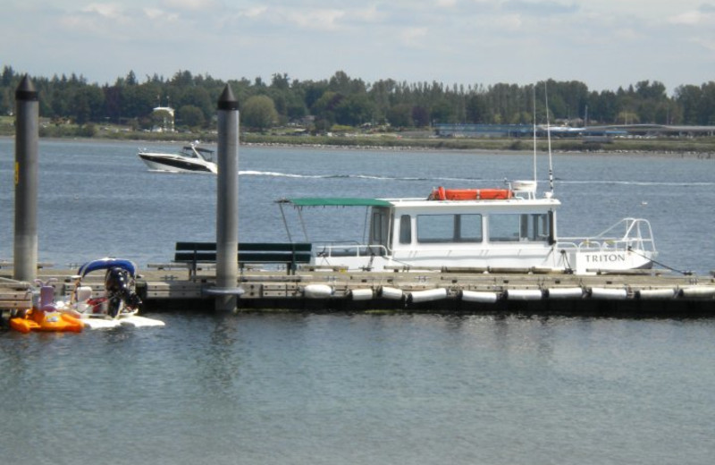 Whale Watching Tours at Semiahmoo Resort