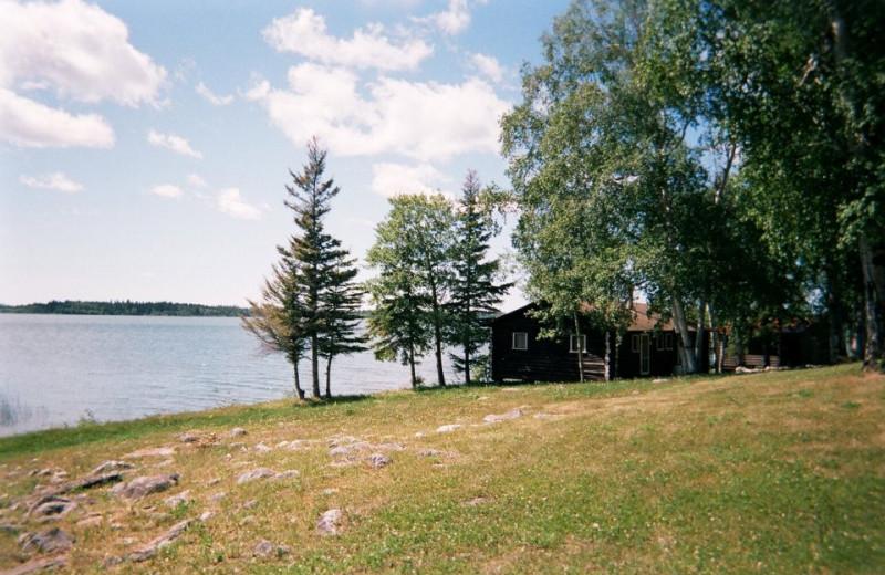 Cabin at Cormorant Lake Lodge.