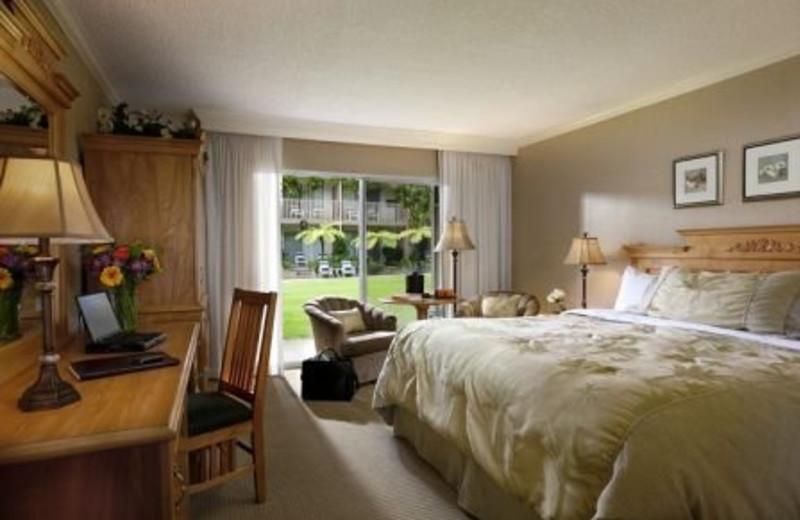 Guest Room at Pepper Tree Inn